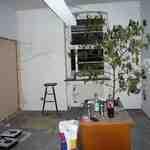 Irgendwann habe ich einen eigenen Raum gefunden, eine Zimmerpflanze reingestellt...