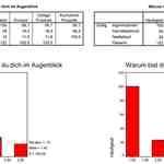 Ergebnisse der Systemüberprüfung (Ausschnitt)